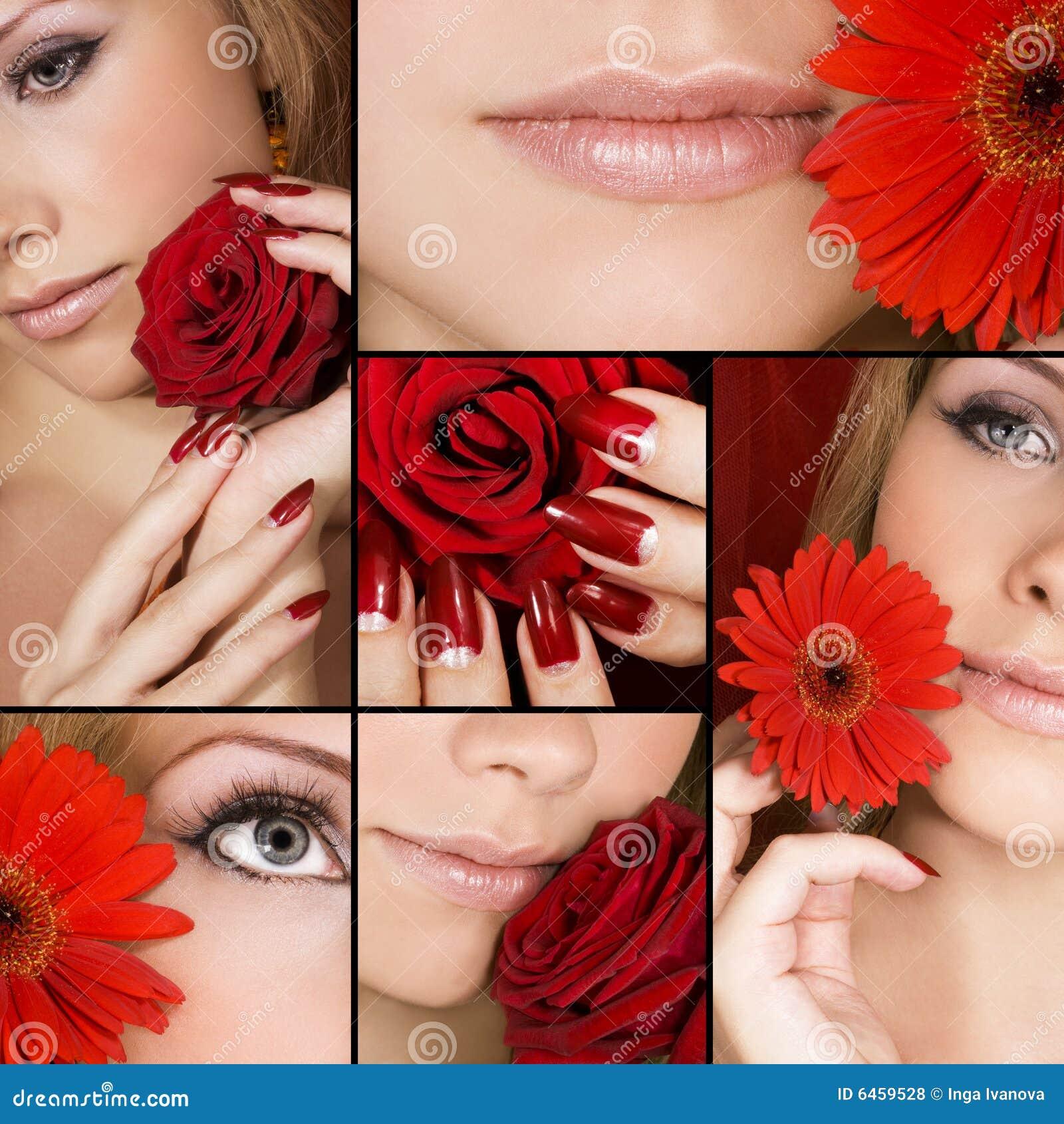 Schönheit ausführlich