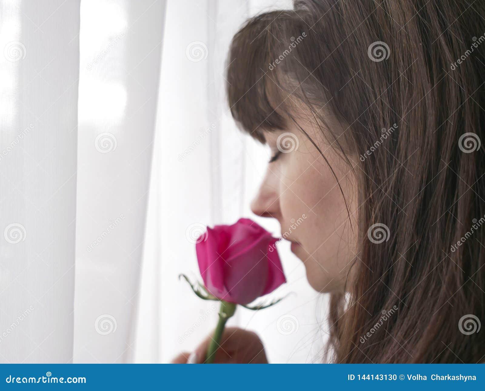 Schönheit mit rosa Rose nahe dem Fenster