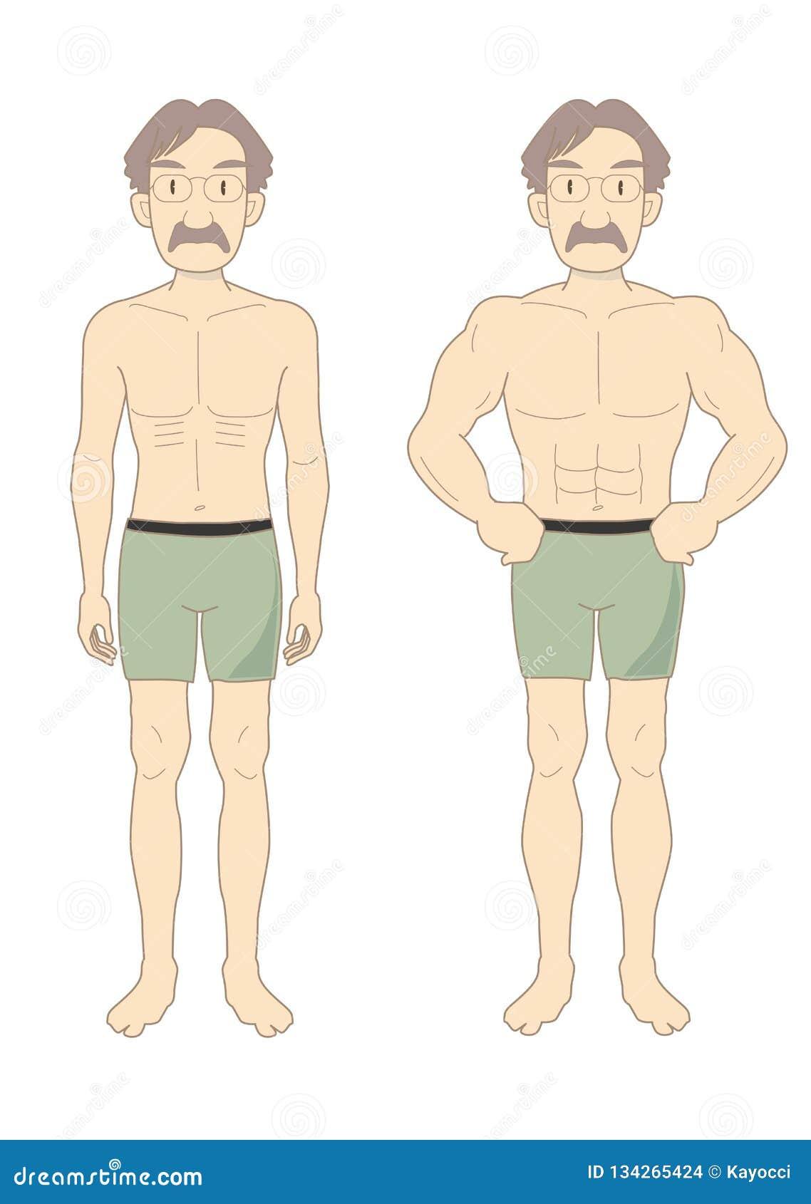 Schönheits-Muskelkörper der Männer mittlere-EIn