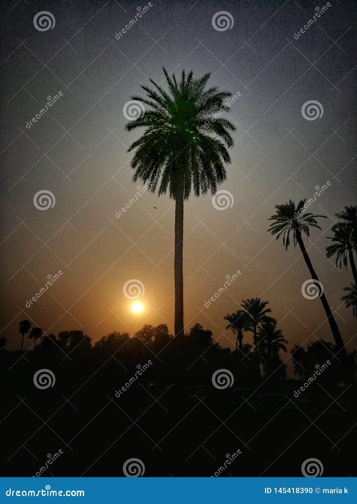 Sch?ne Ansicht des Sonnenuntergangs