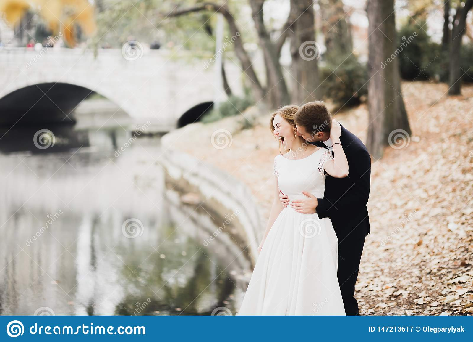 Sch?ne romantische Hochzeitspaare von den Jungverm?hlten, die im Park umarmen