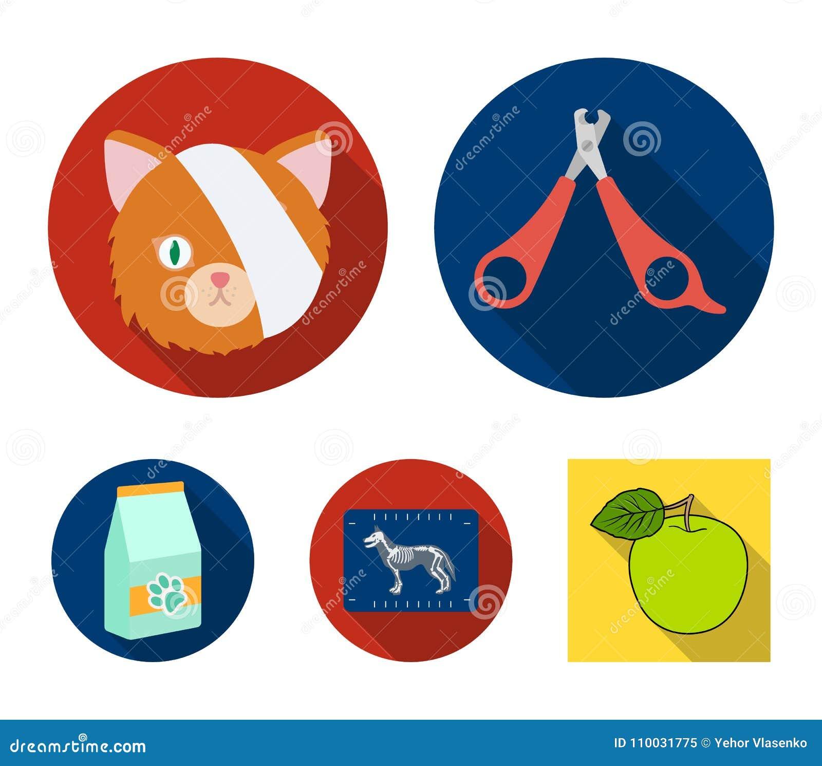 Schaar, kat, verband, gewonde Vastgestelde de inzamelingspictogrammen van de dierenartskliniek in het vlakke Web van de de voorra