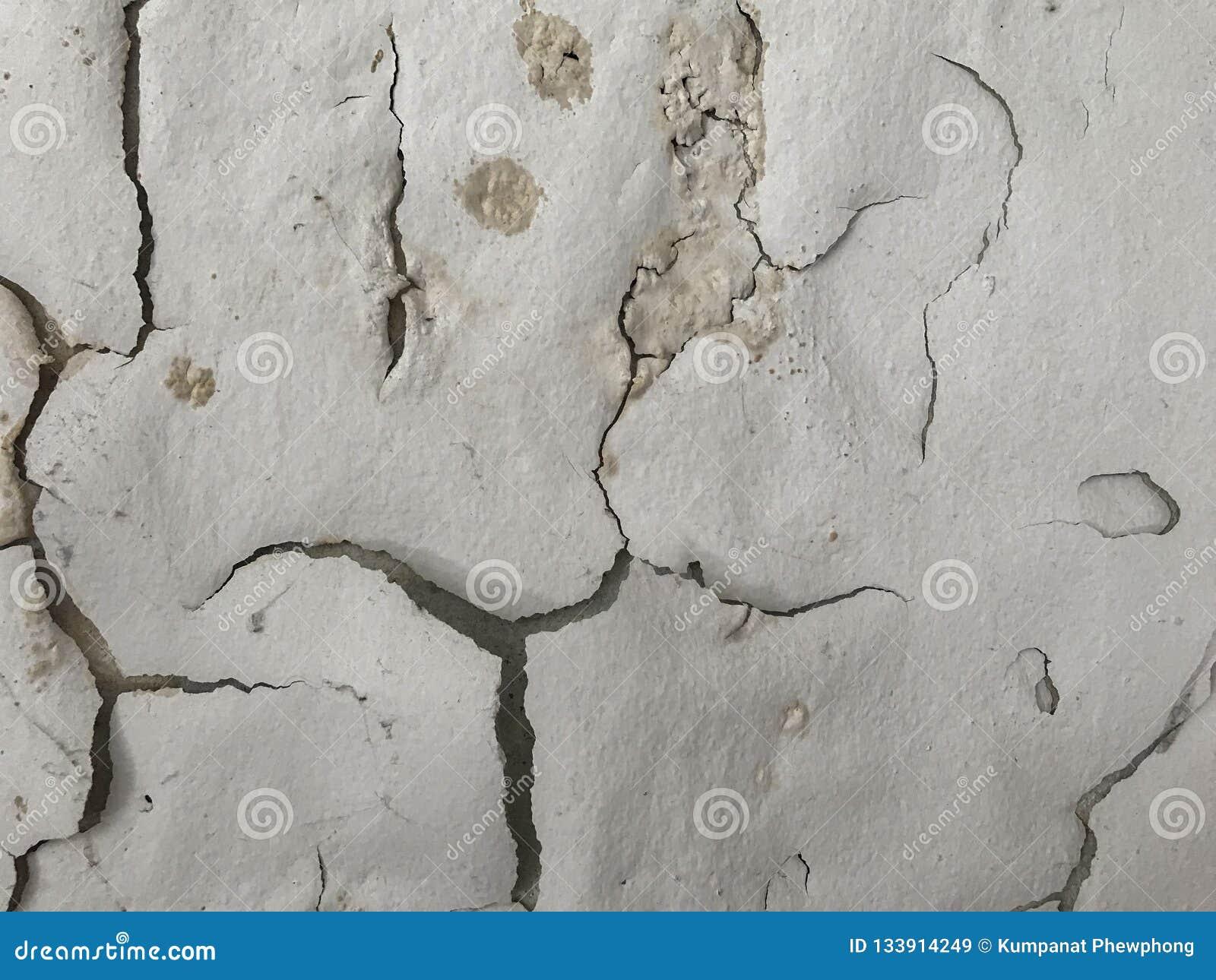 Schale gemalt wie menschliches Gesicht auf Wandhintergrund