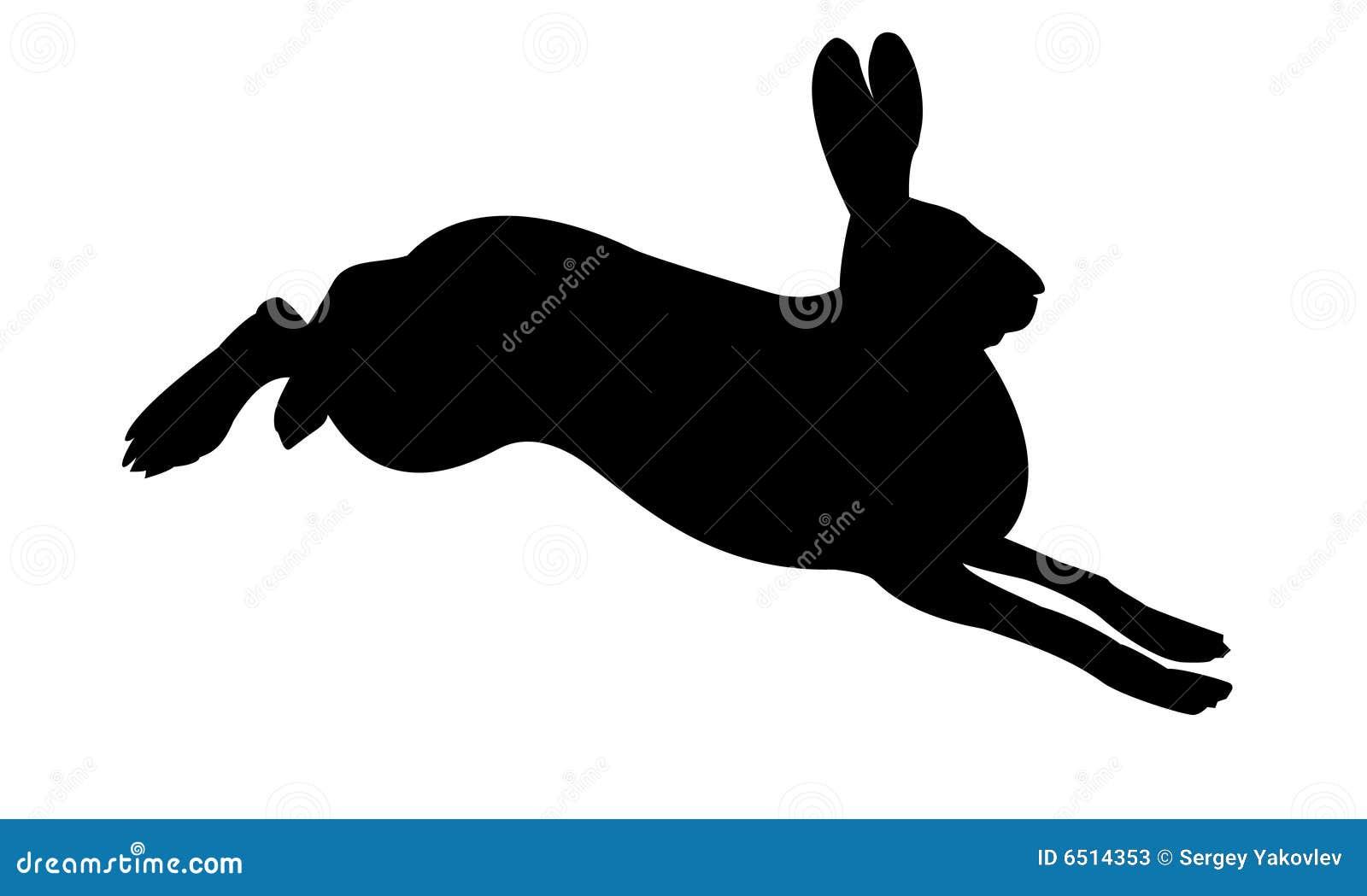 Schattenbild des Kaninchens
