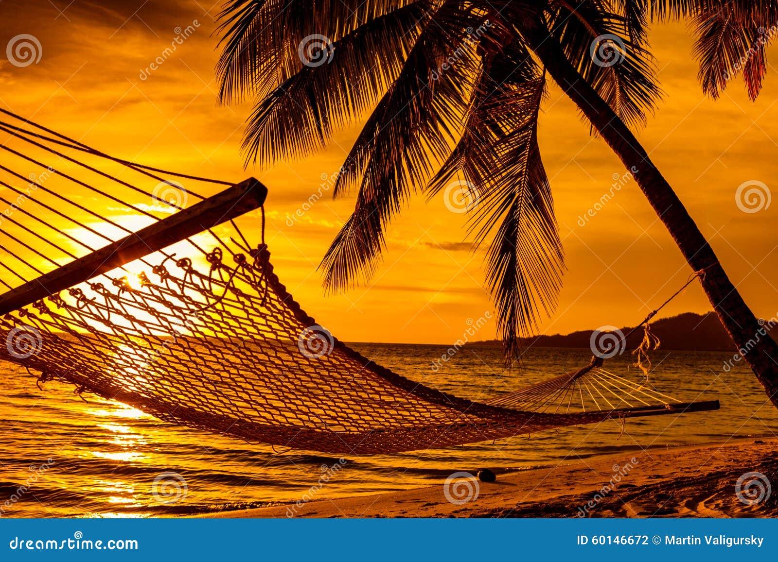 schattenbild von h ngematten und palmen auf einem strand. Black Bedroom Furniture Sets. Home Design Ideas