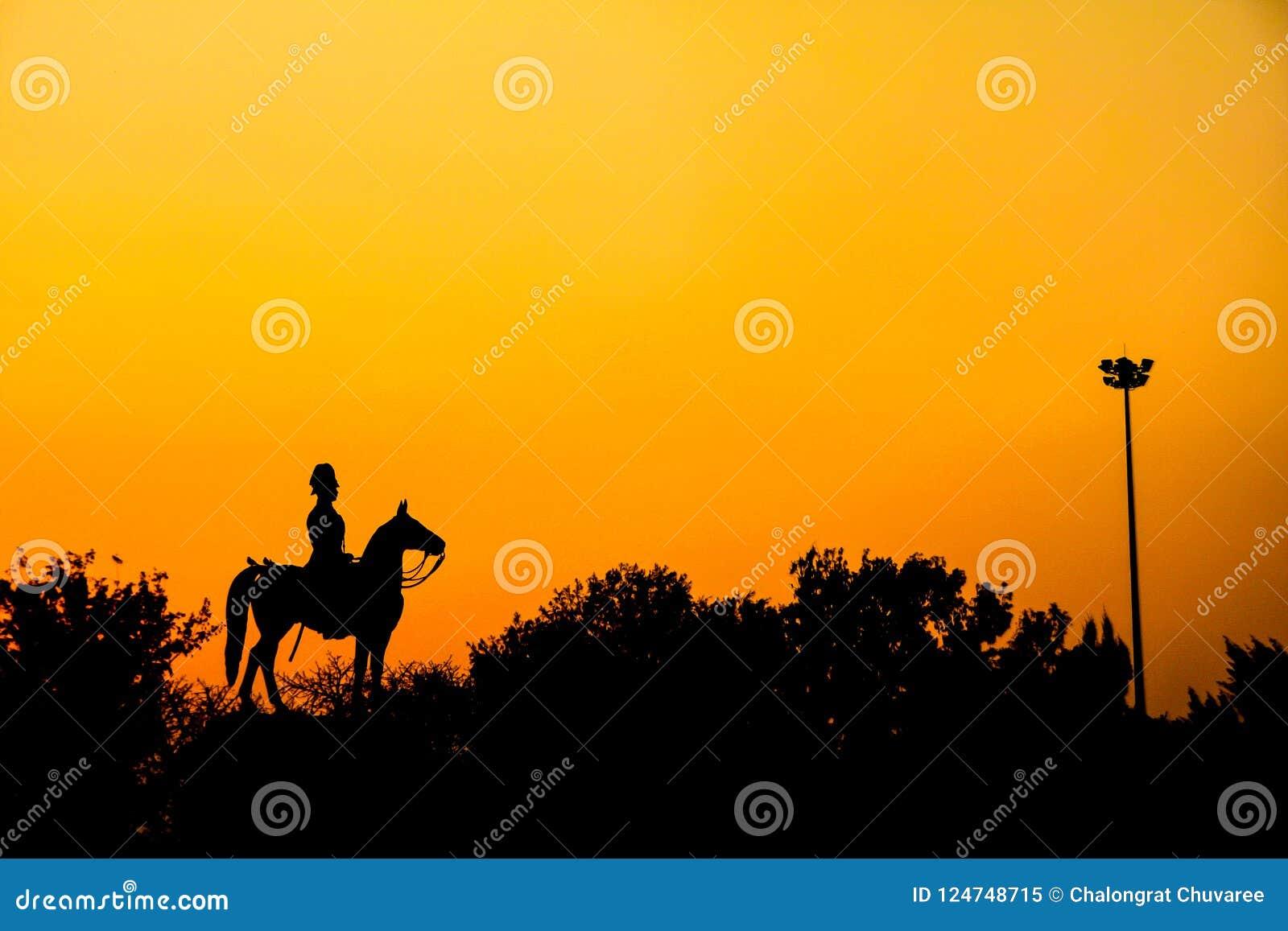 Schattenbild von Statue Thailand Königs Rama V