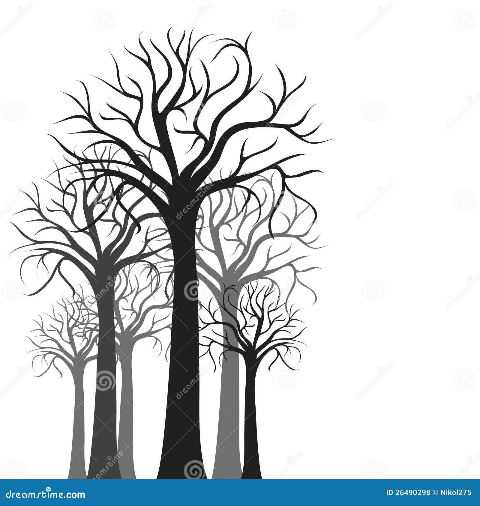Schattenbilder der Bäume
