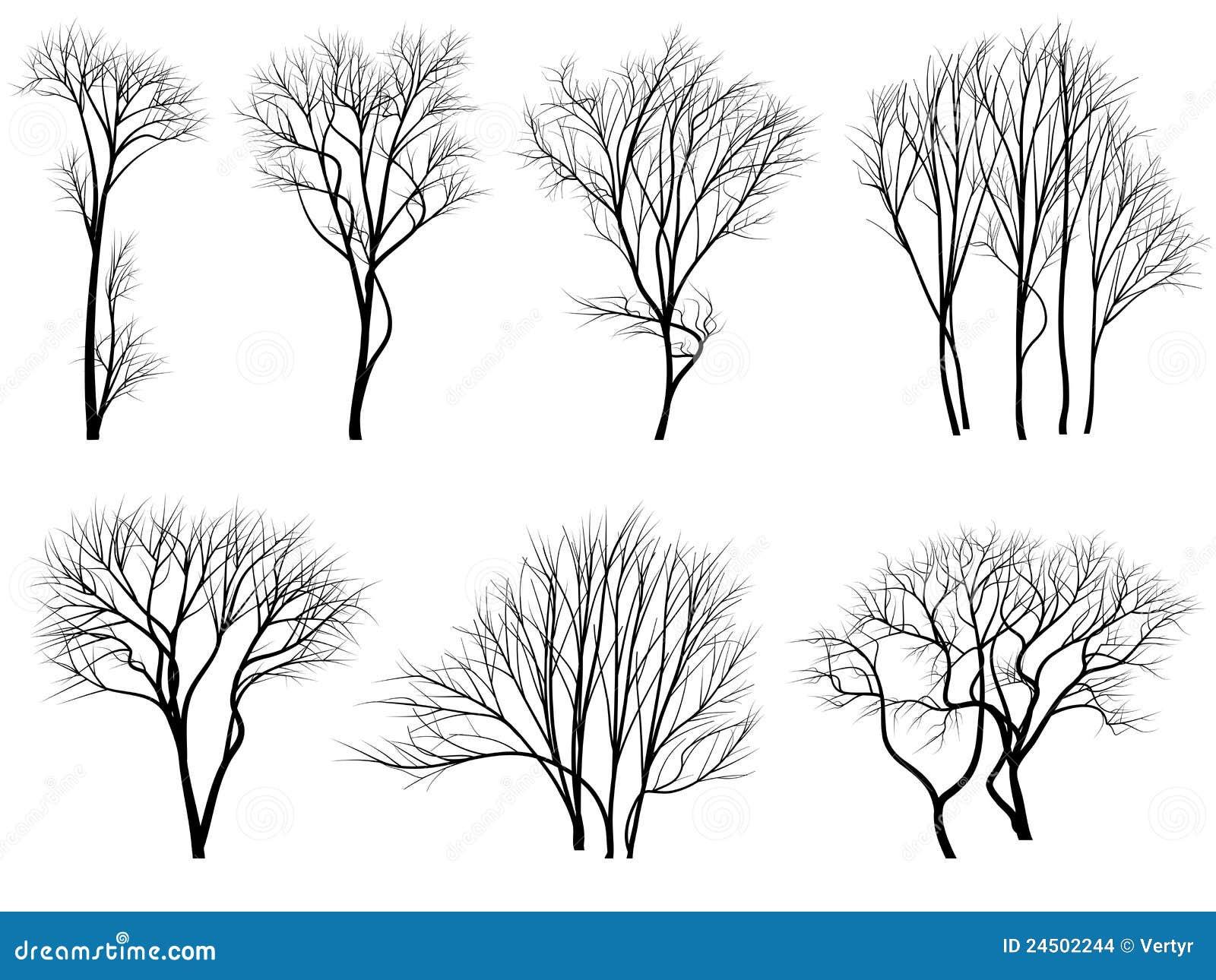 Ausgezeichnet Malvorlagen Bäume Und Blätter Zeitgenössisch - Entry ...