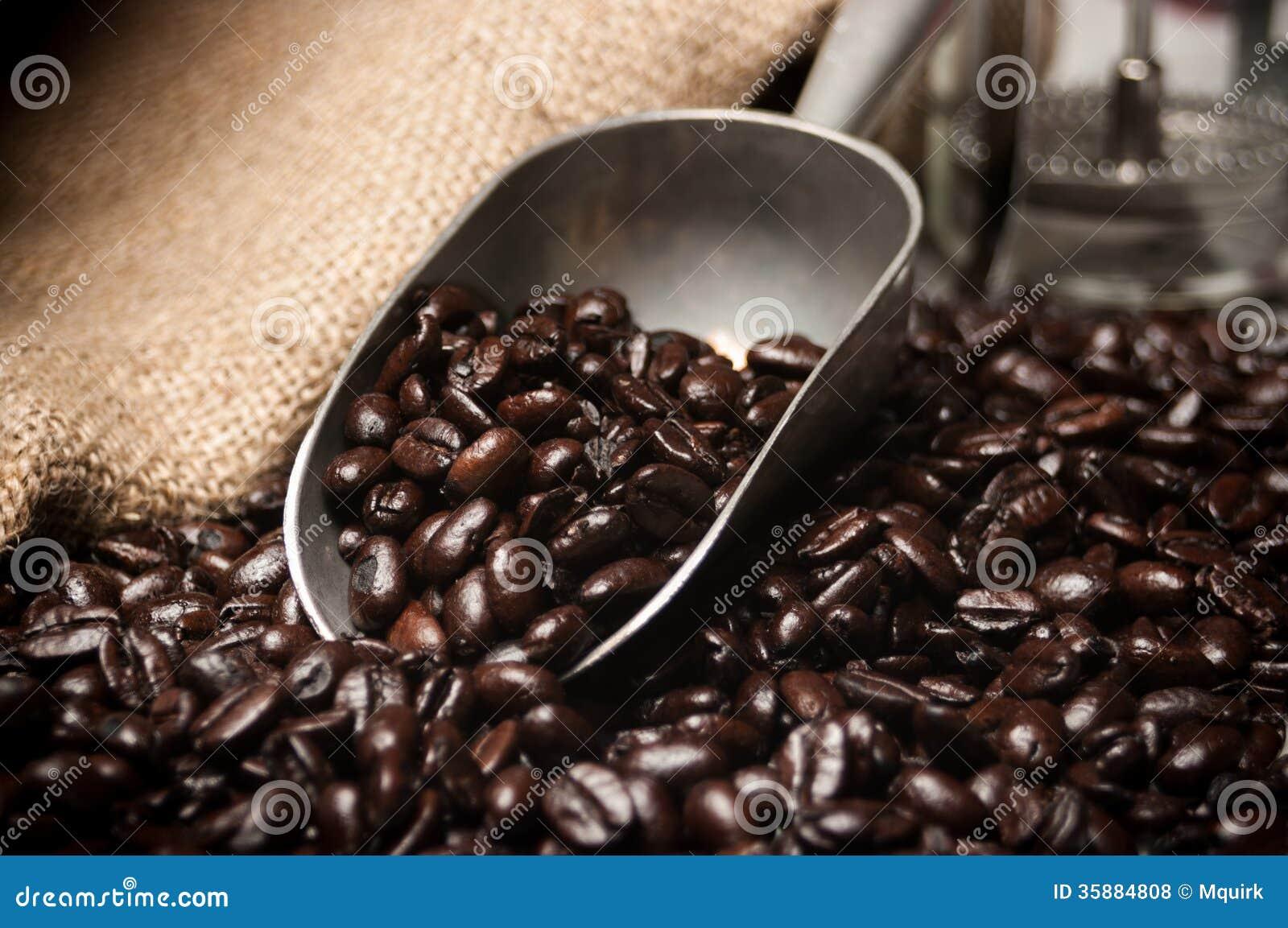 Schaufel von Kaffeebohnen