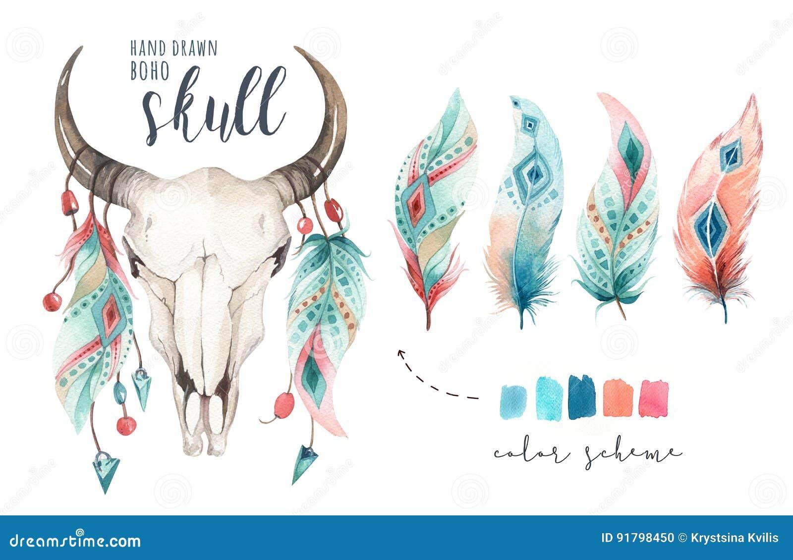 Schedel en veer van de waterverf de de Boheemse koe Westelijke zoogdieren Van de bohodecoratie van Boho hipster herten de drukgew