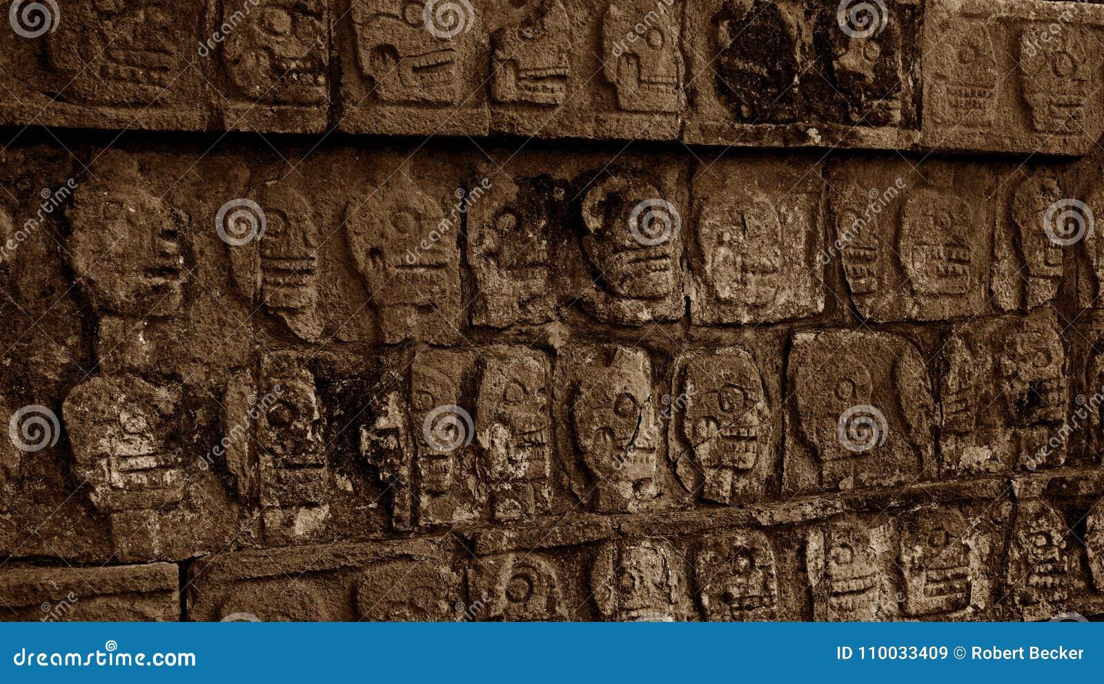 Schedel het snijden op een muur in de wildernis van Yucatan