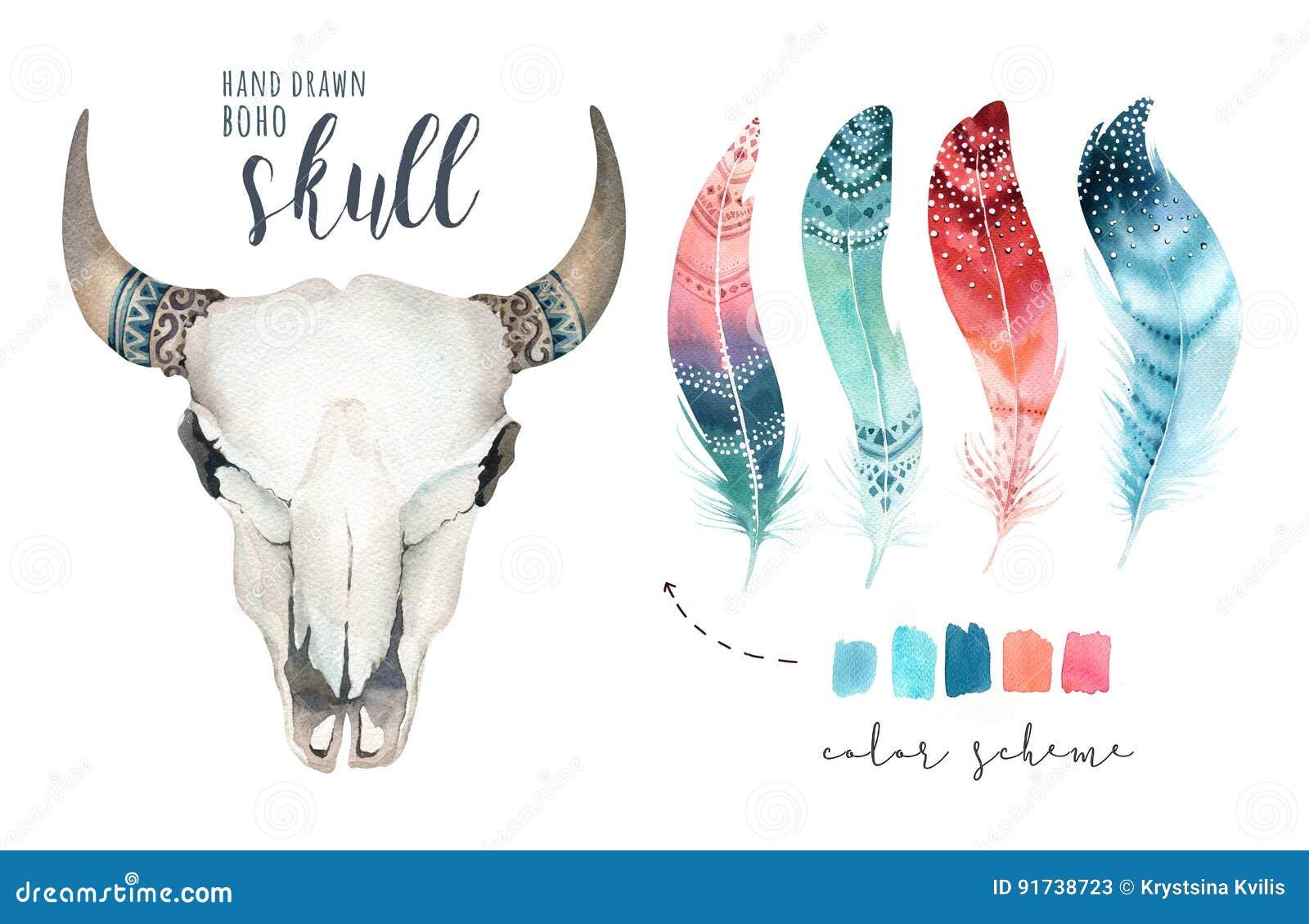 Schedel van de waterverf de Boheemse koe Westelijke zoogdieren Watercolourheup