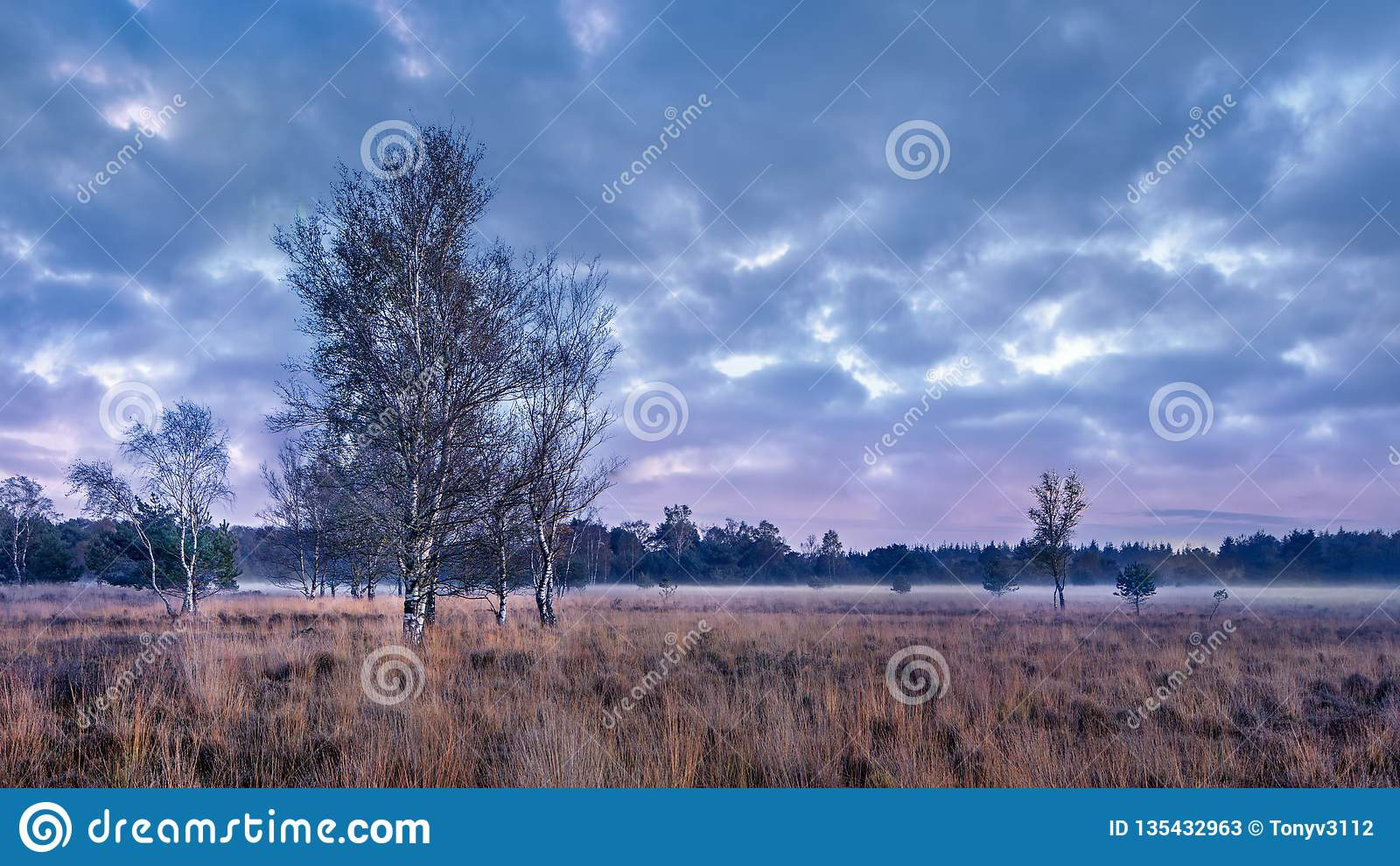 Schemeringscène bij een rustige heide, Nederland