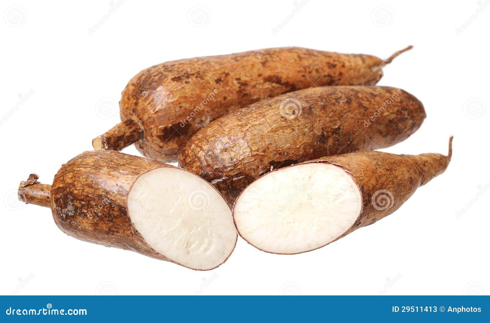 Scherpe en gehele maniok