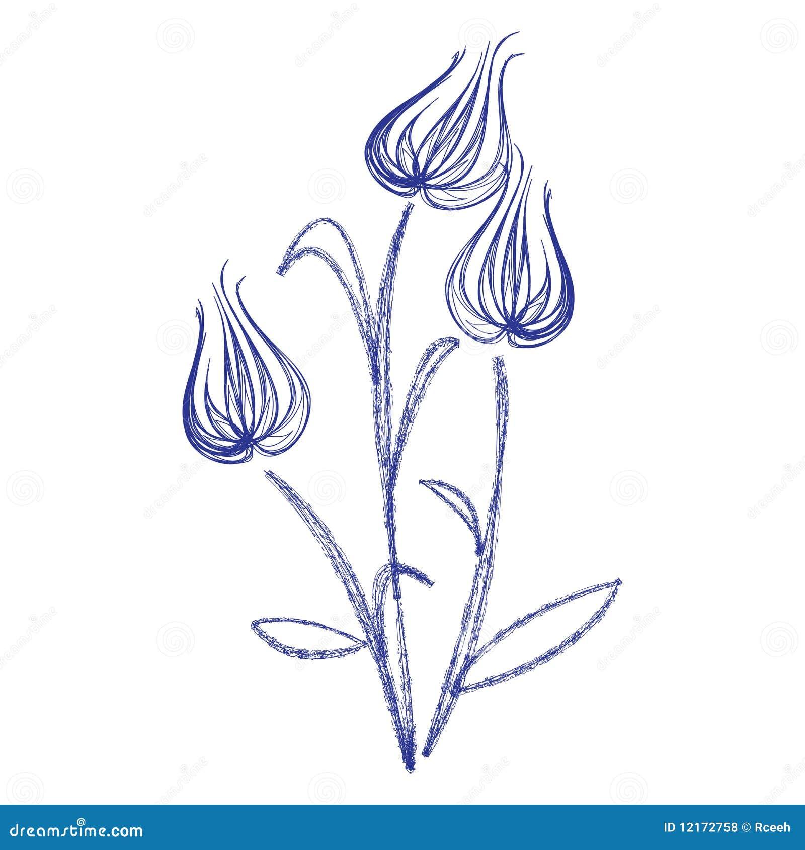 Schets Met Tulpen Royalty vrije Stock Foto u0026#39;s   Afbeelding  12172758