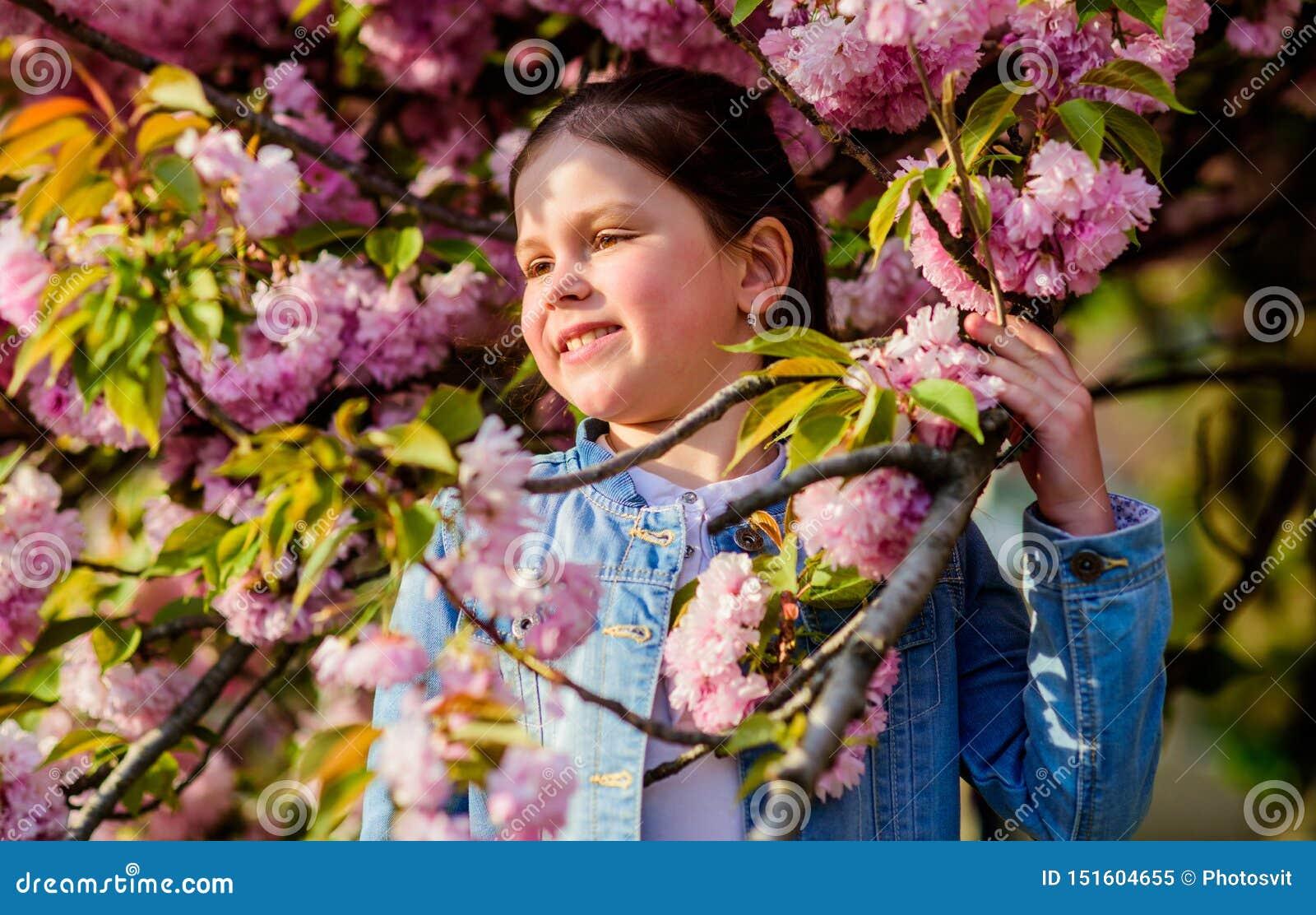 Schitterende bloem en vrouwelijke schoonheid r Sakuraboom het bloeien Park en Tuin Klein meisje