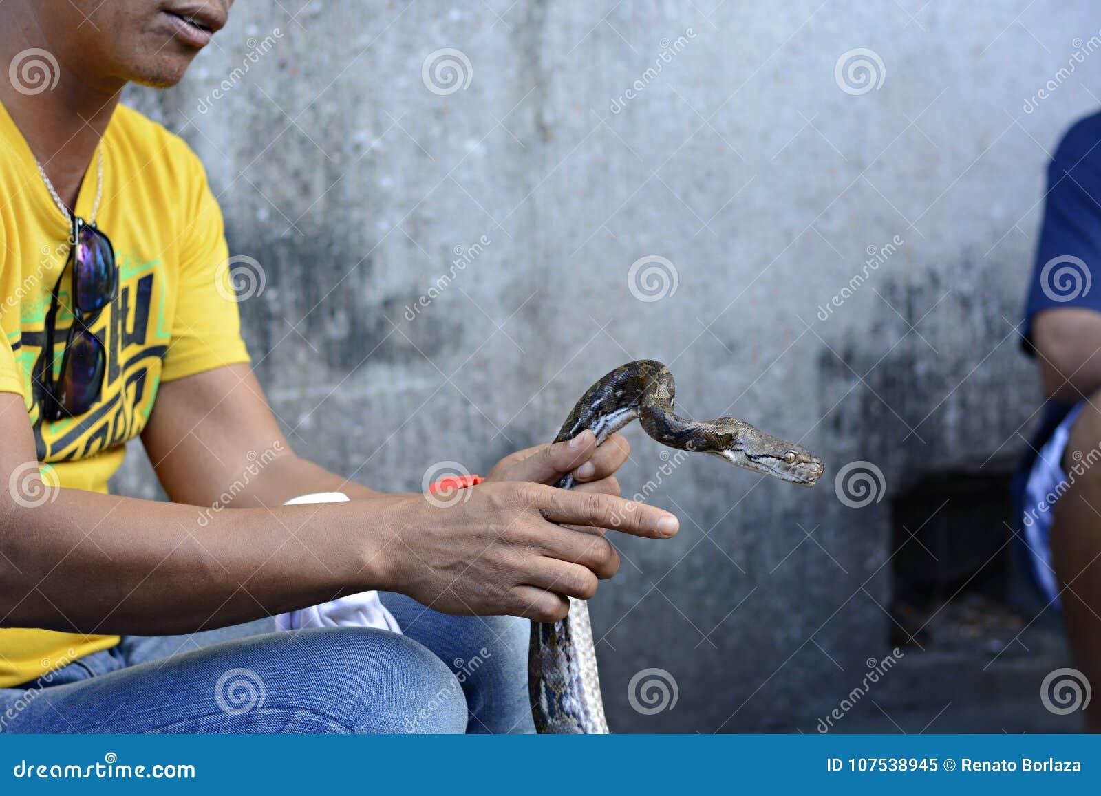 Schlängeln Sie sich den Enchantermagier, der in der Straße mit seiner Pythonschlange sitzt