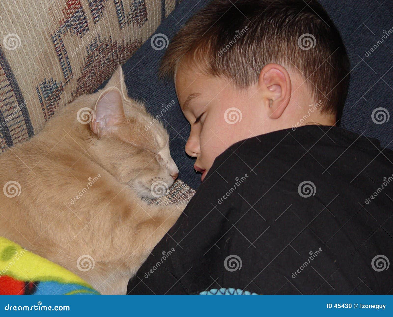 Schlafender Junge und Katze