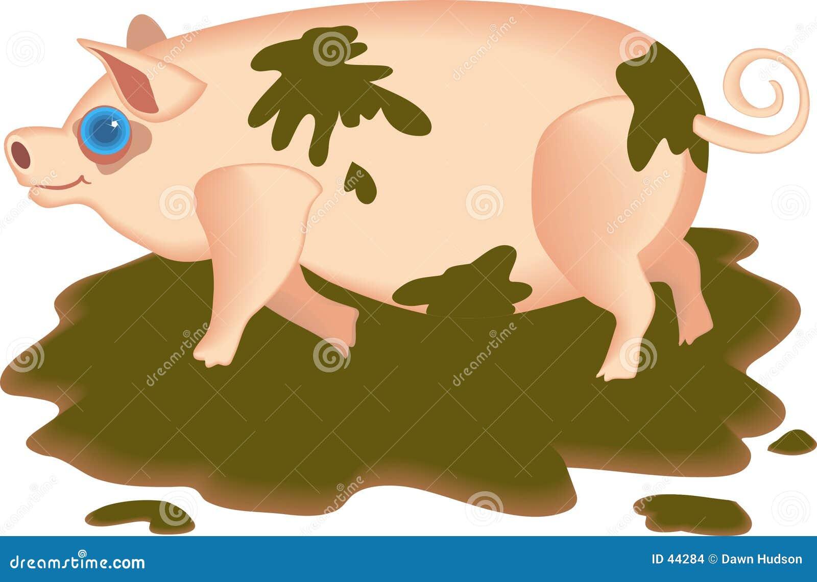 Schlammiges Schwein