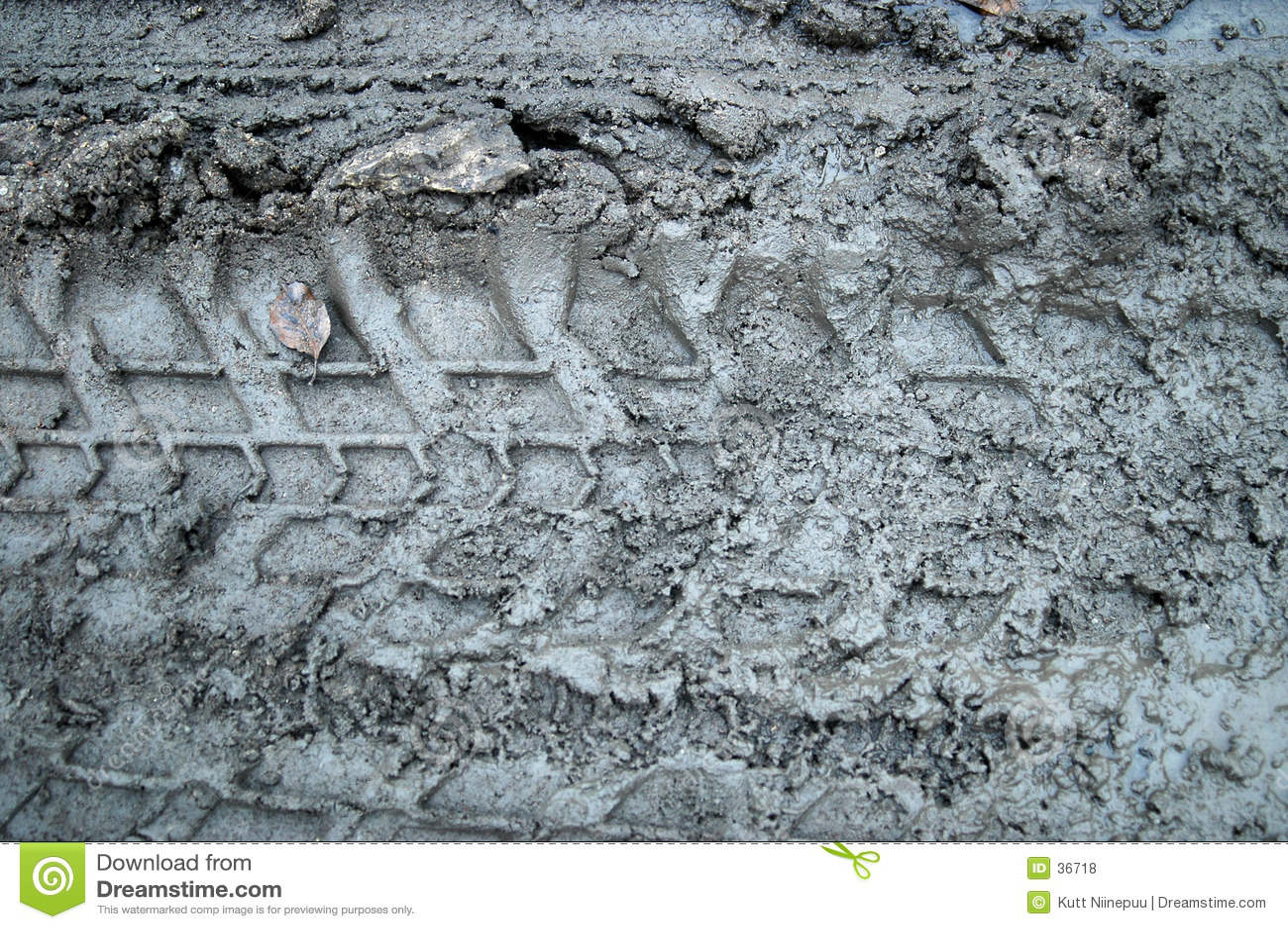 Download Schlammspuren stockfoto. Bild von falsch, wald, wetter, landwirtschaft - 36718