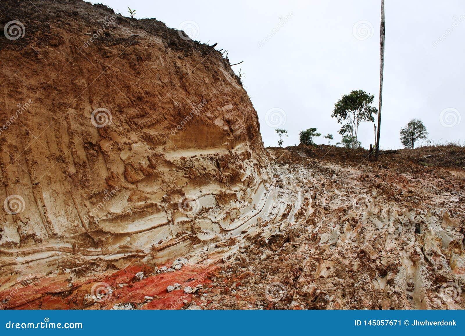 Schlammweise, nachdem herum der Wald verringert worden ist