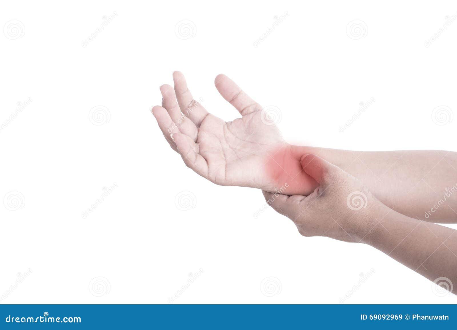 Atemberaubend Handgelenk Und Hand Anatomie Galerie - Menschliche ...