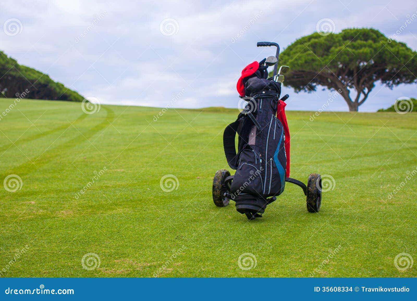 Schließen Sie oben von der Golftasche auf einem grünen perfekten Feld