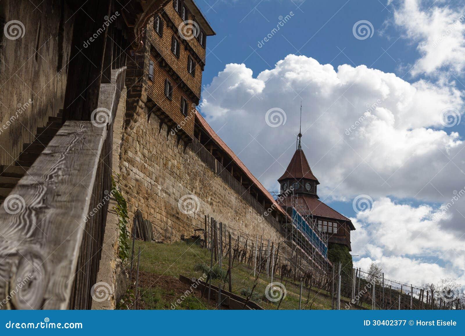 Schloss Esslingen Esslinger Burg Stockbild Bild Von Wand