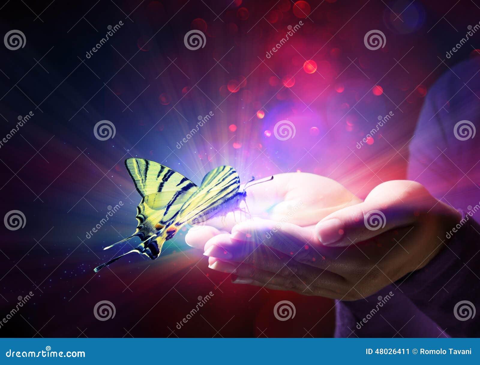 Schmetterling in den Händen
