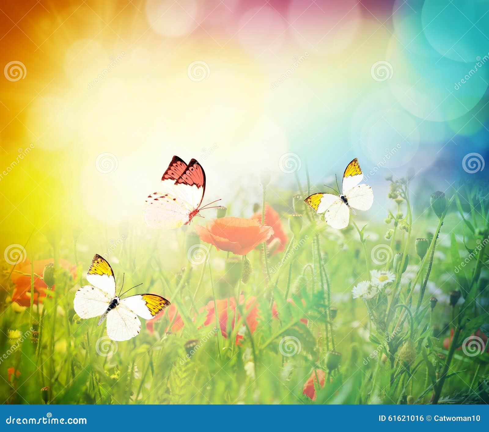 Schmetterlinge die auf eine blumenwiese fliegen stockfoto for Fliegen in blumen