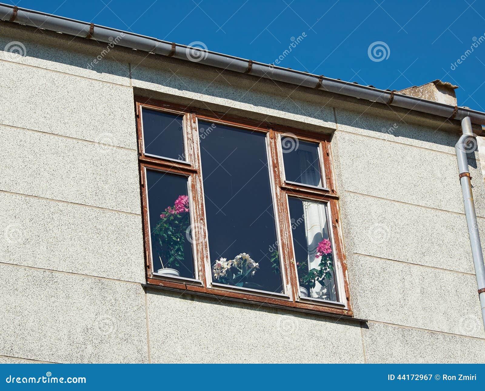sch ne blumen in einem vase am fenster stockfoto bild 44172967. Black Bedroom Furniture Sets. Home Design Ideas