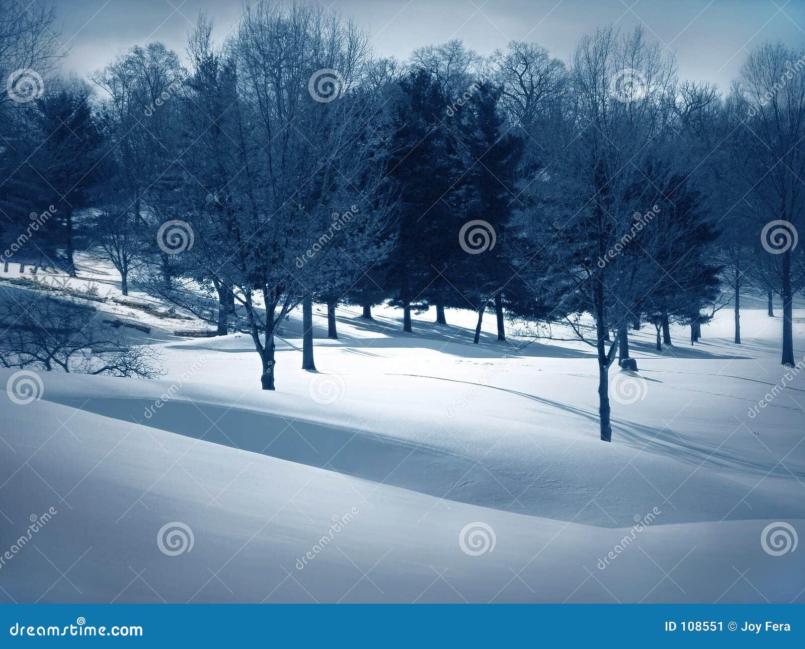 Schnee-Antriebe