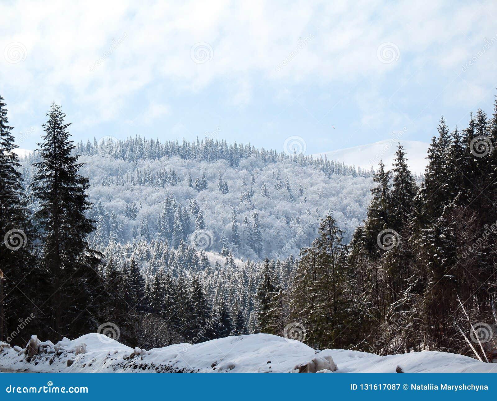 Schnee bedeckte Gebirgshügel