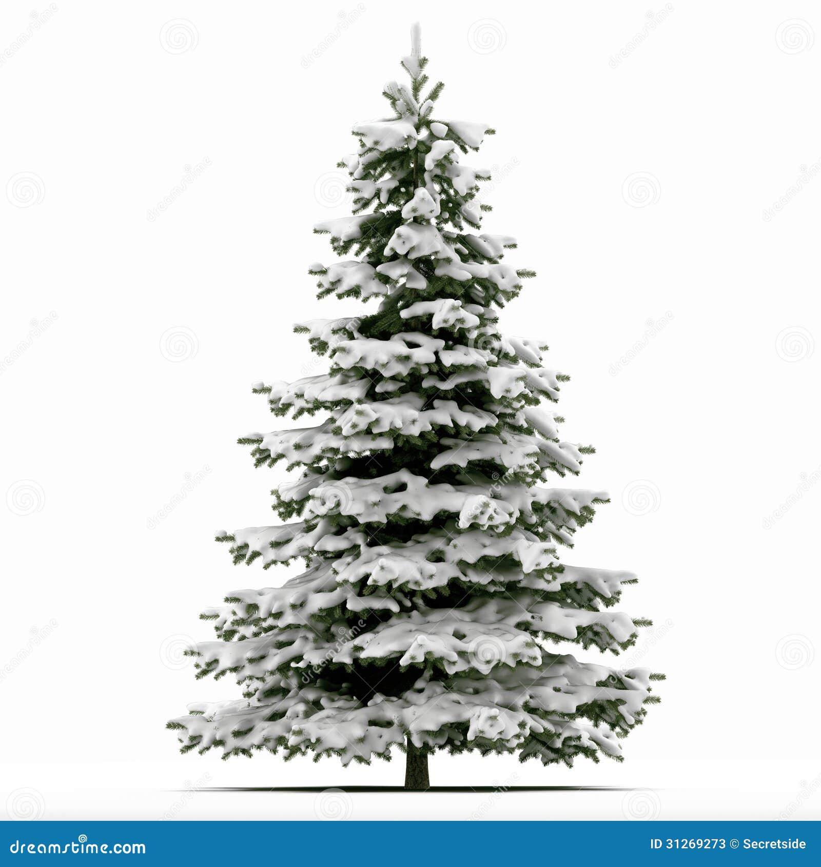 schnee bedeckte weihnachtsbaum stockfotos bild 31269273. Black Bedroom Furniture Sets. Home Design Ideas