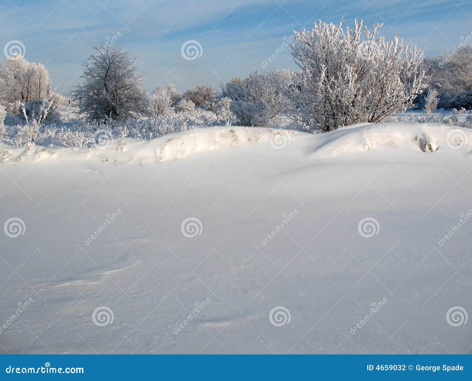 Schneesperre