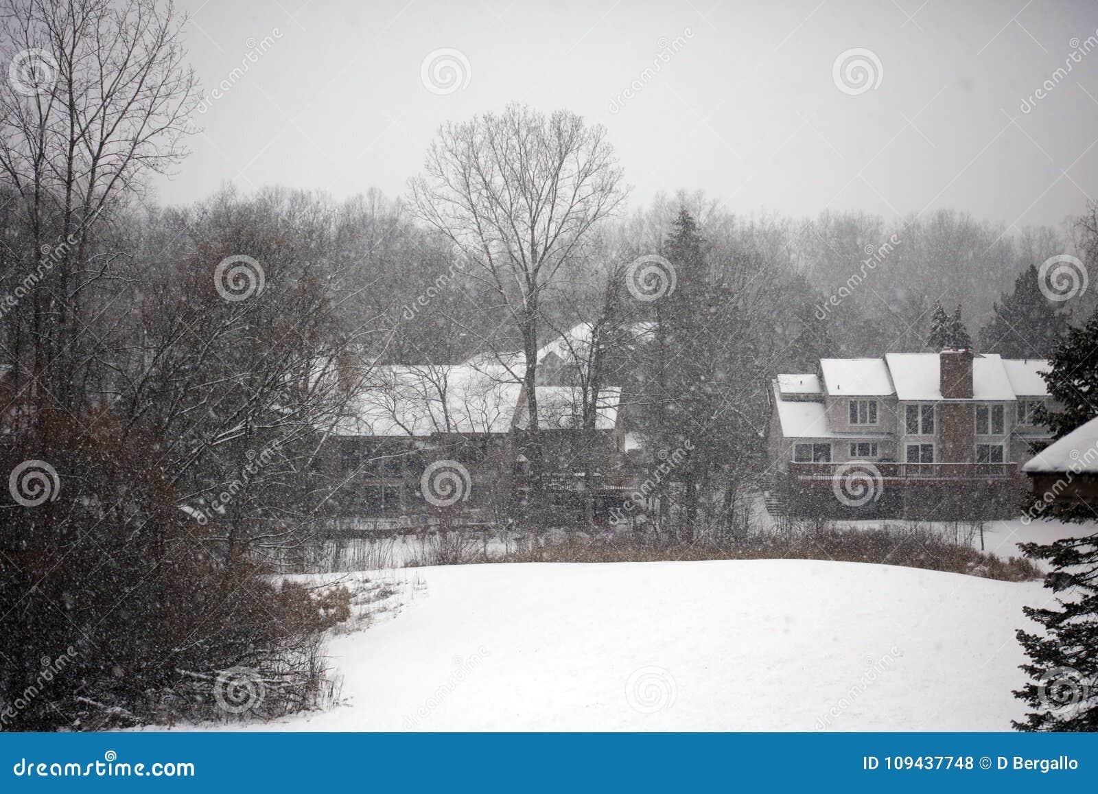 Schneiende Szene des Winters mit Häusern und Bäumen im Hintergrund