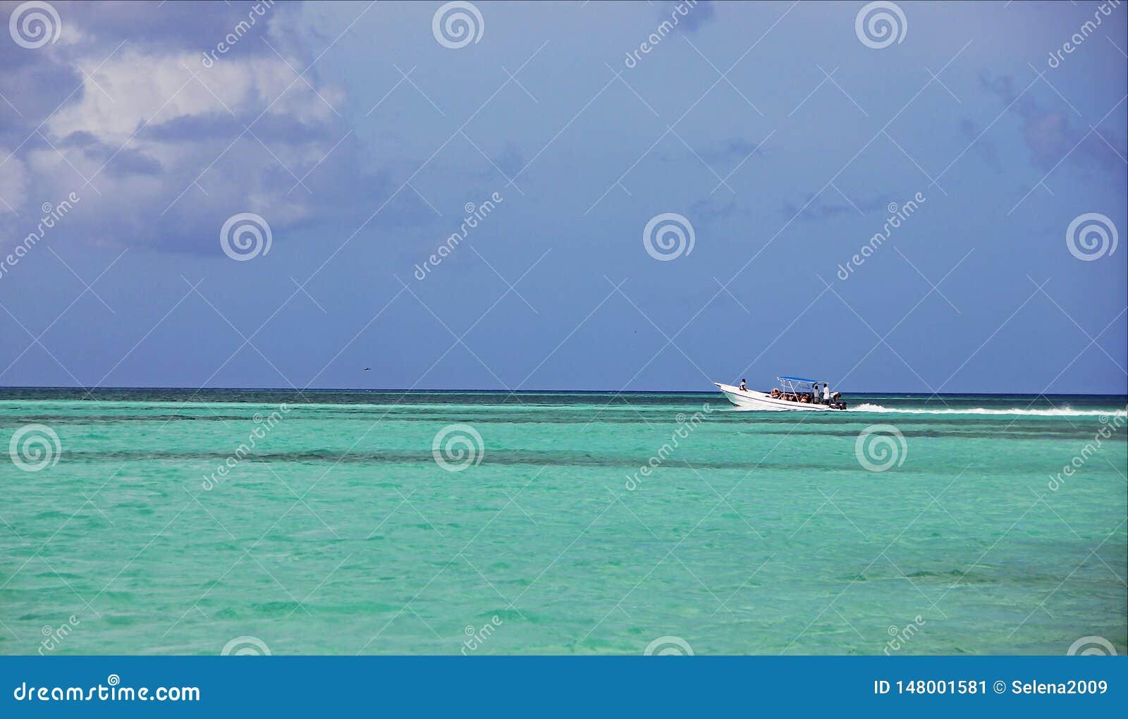 Schnellbootsegeln im schönen tropischen Ozean, gegen den blauen grenzenlosen Himmel