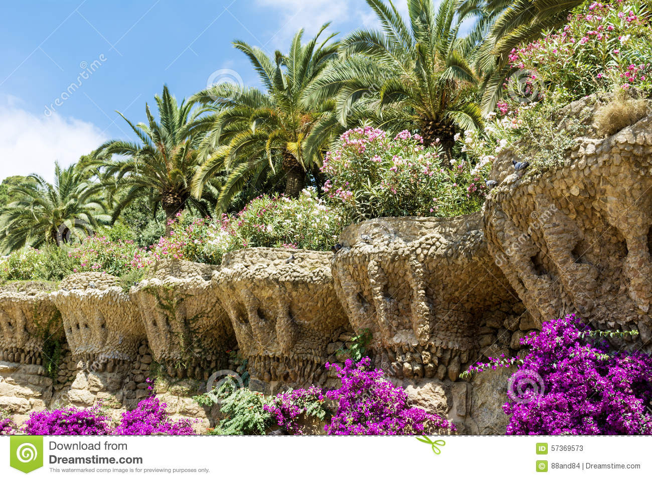 sch ner garten mit palmen und bougainvillea im park guell. Black Bedroom Furniture Sets. Home Design Ideas