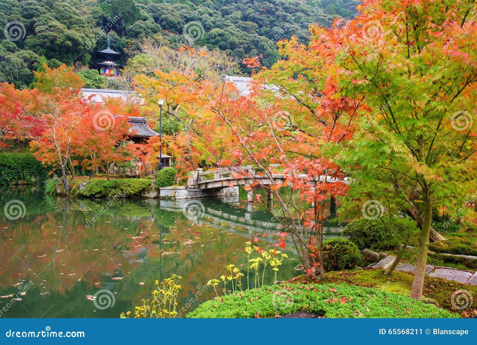 sch ner herbstgarten und pagode bei eikando kyoto. Black Bedroom Furniture Sets. Home Design Ideas