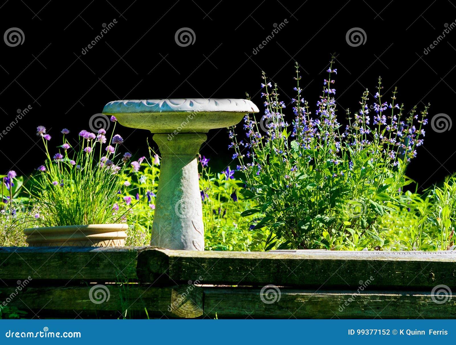 Schnittlauch Und Salbei Blüht Mit Vogeltränke In Einem Garten ...