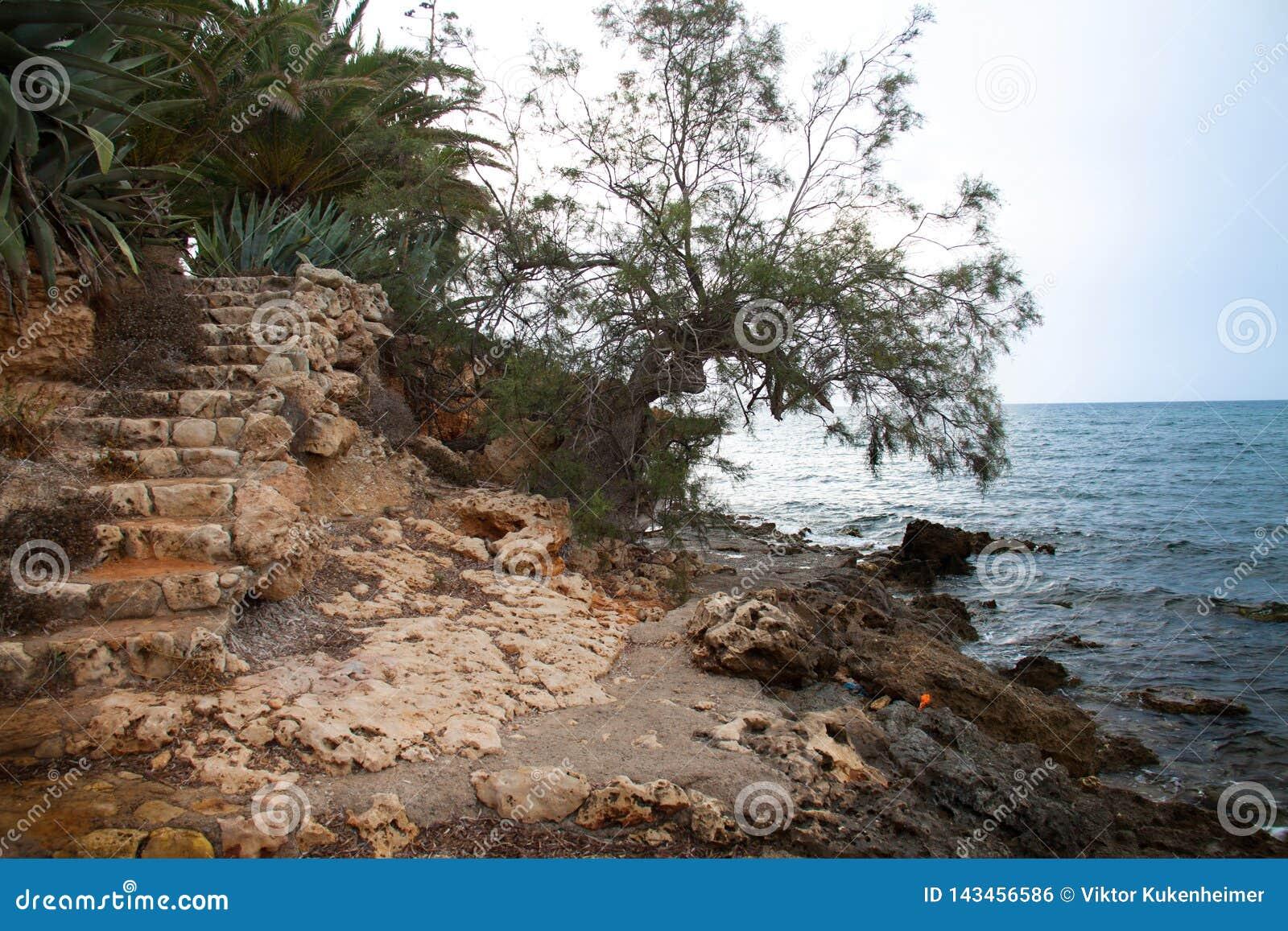 Schodki na plaży na Mallorca w Hiszpania