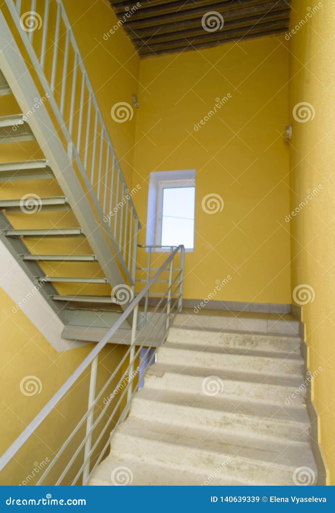Schodki w budynku korytarzu schody w nowożytnym gospodarki klasy domu
