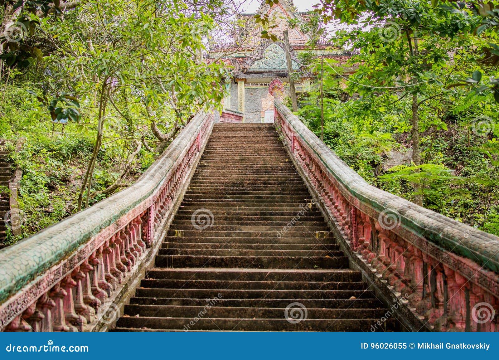 Schody iść do buddyjskiej świątyni w dżungla lesie