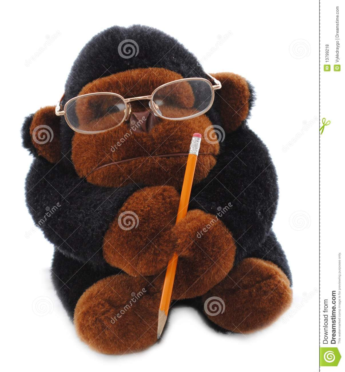 Scholarly Gorilla stock photo. Image of business 1b5d8e167b7