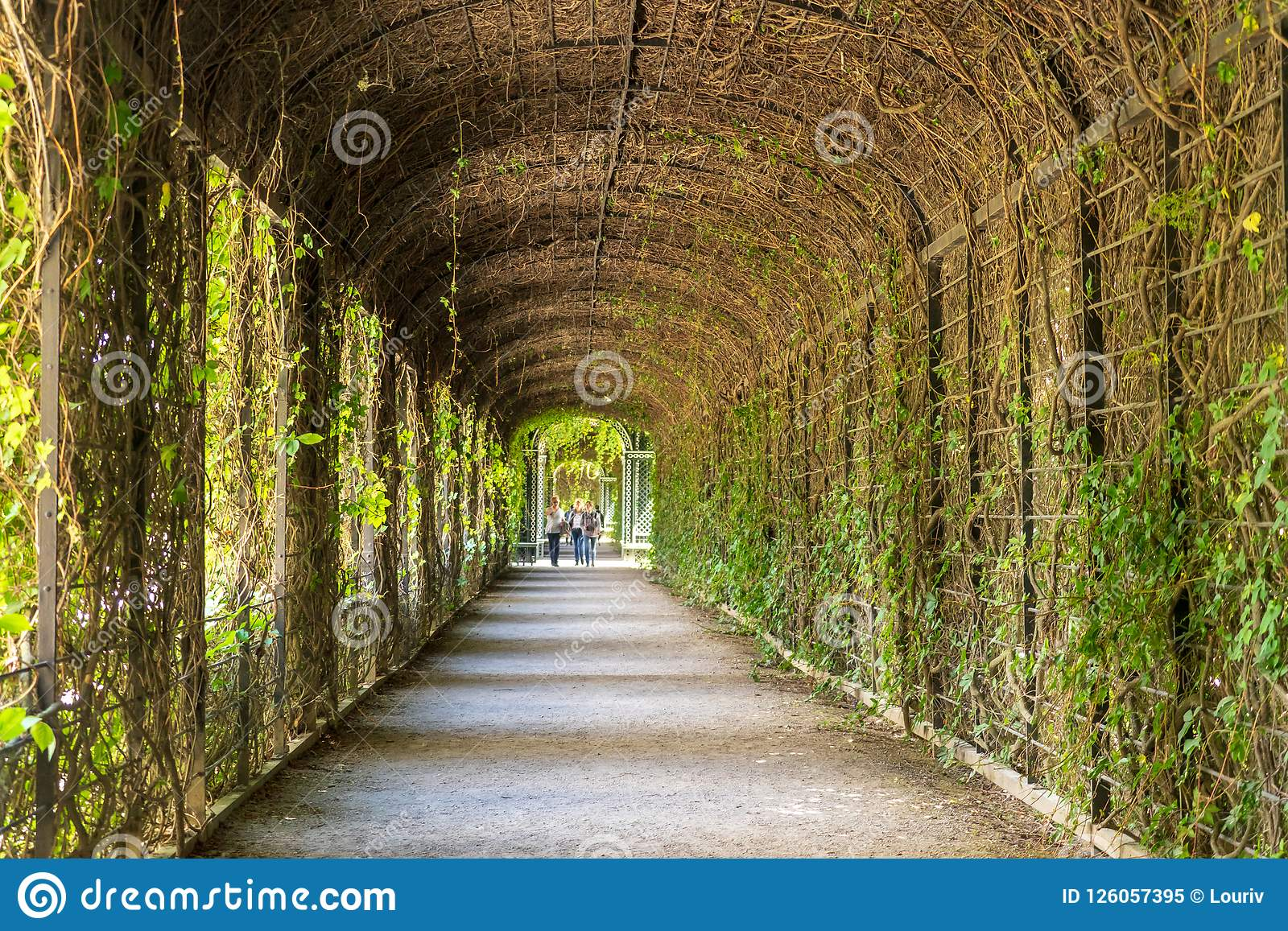 Garden Management In Schonbrunn Palace Editorial Image - Image of ...