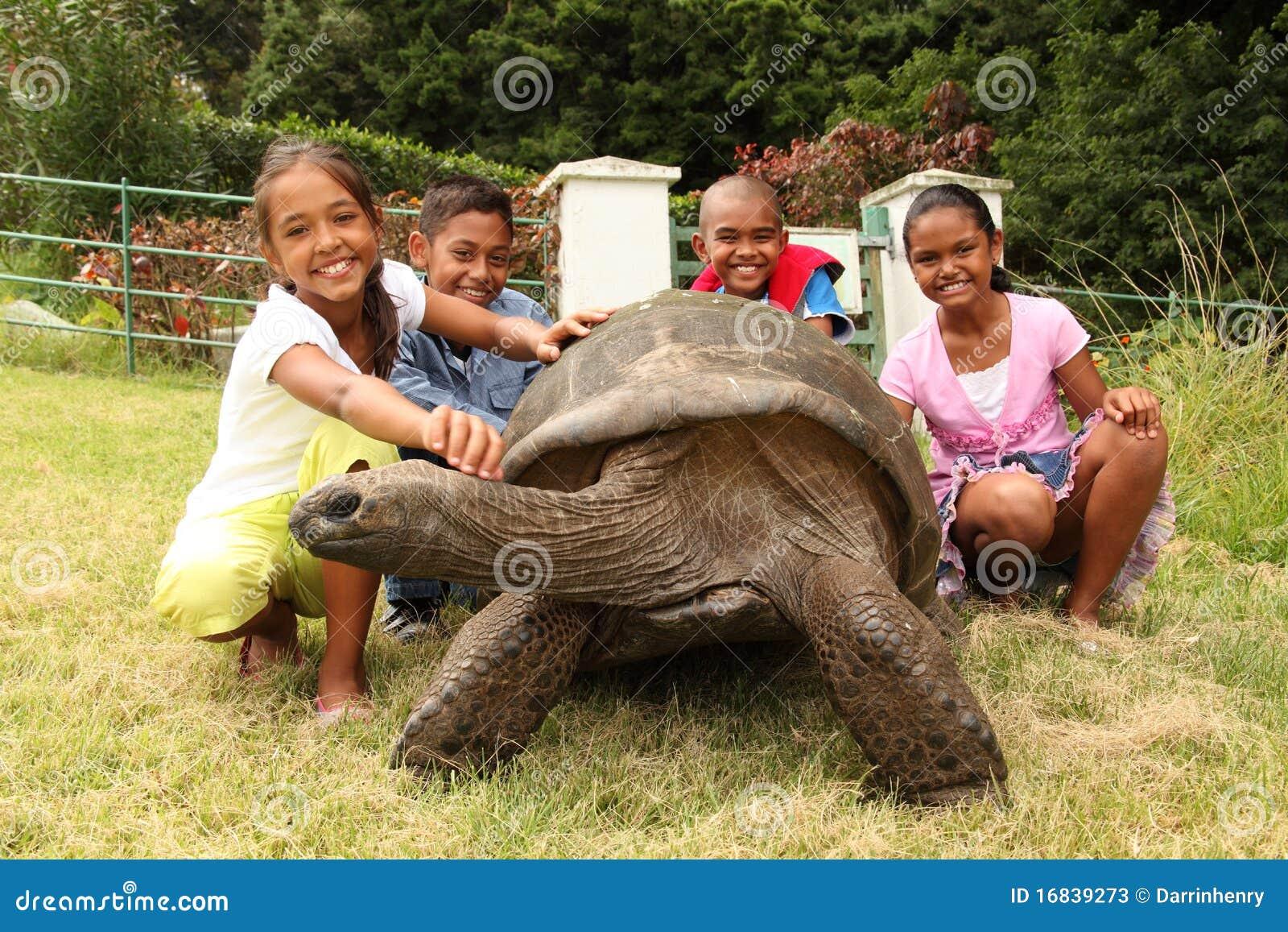School Children With Giant Tortoise St Helena Stock s Image
