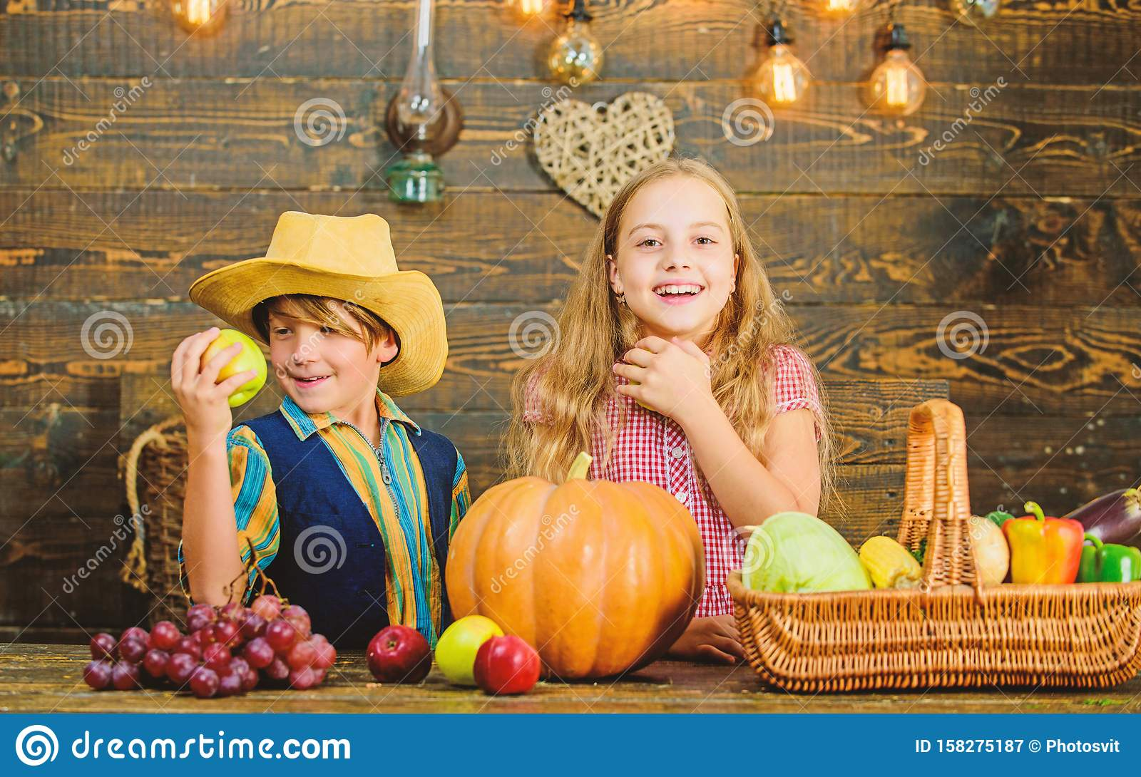 School Festival Holiday. Elementary School Fall Festival Idea. Celebrate Harvest Festival ...
