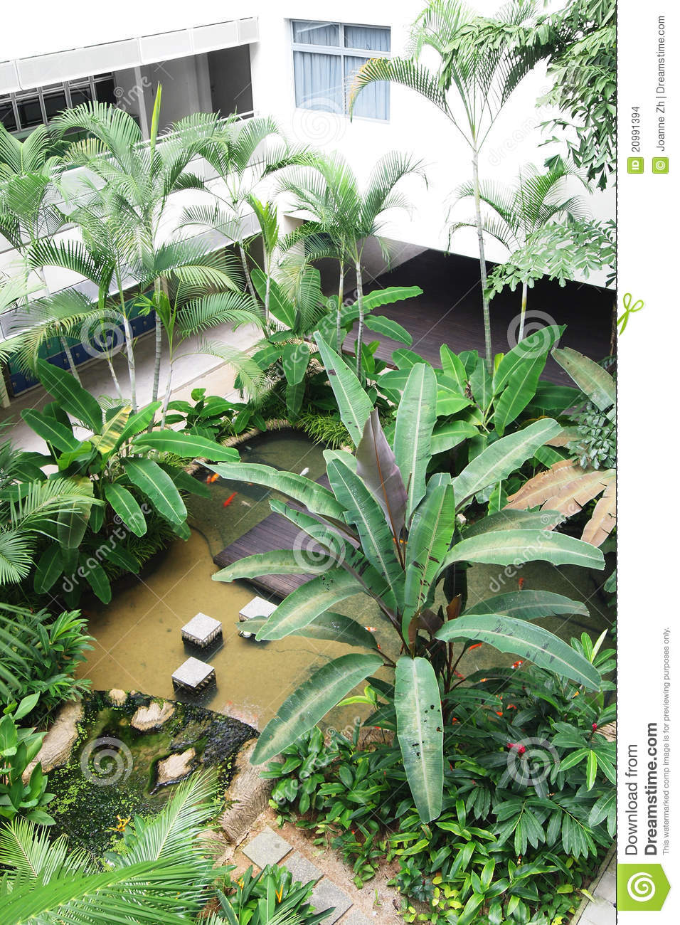 School Landscaping With Pond Stock Images Image 20991394