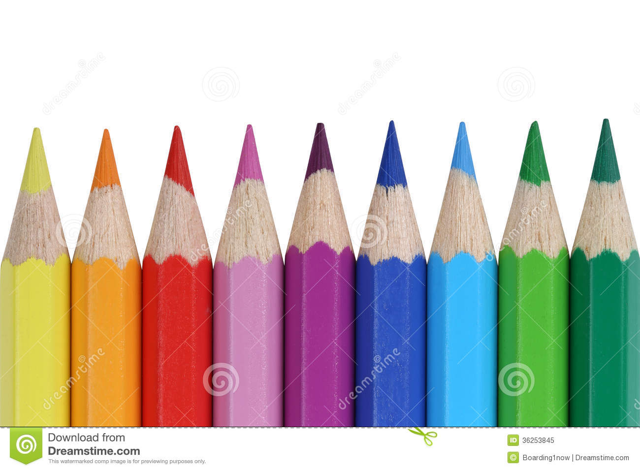 School supplies colored pencils in a row, isolated