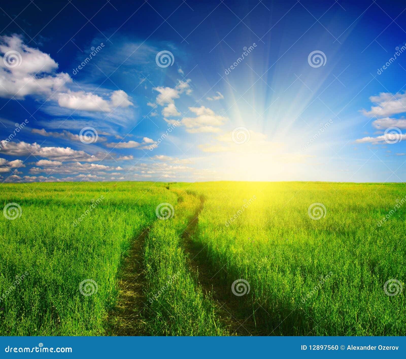 Schotterweg im Gras und im Sonnenuntergang